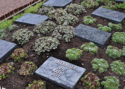 urnenpark-korschenbroich-00062